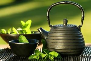 Kerala: 'Drink green tea, kick the butt'