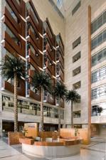 American Hospital Dubai supports efforts to build Dubai's medical tourism hub