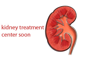 Jeddah to have kidney treatment center soon