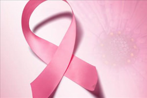 High cholesterol fuels breast cancer: Expert
