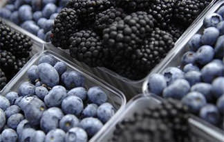 Eating berries, chocolate may guard against diabetes