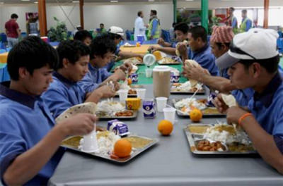Abu Dhabi catering companies under the scanner
