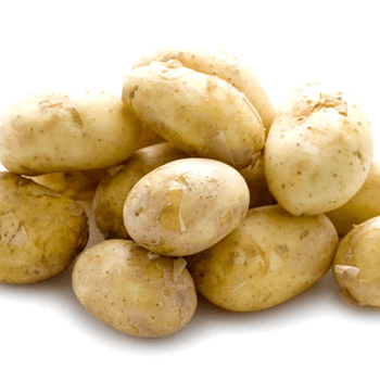Simple potato extract can control obesity, says study