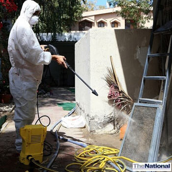 Abu Dhabi residents fight losing battle against mould