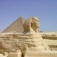 Doctors in Egypt