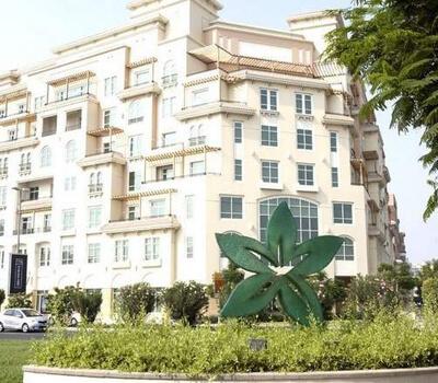 Six fold rise in medical violations in Dubai